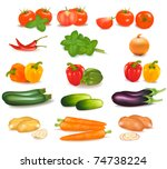 the big colorful group of... | Shutterstock .eps vector #74738224
