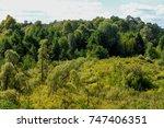summer landscape. swamp  marsh  ... | Shutterstock . vector #747406351