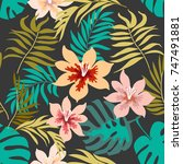 exotic tropical flowers and... | Shutterstock .eps vector #747491881