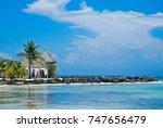 caribbean beach palm | Shutterstock . vector #747656479