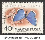 """Small photo of MOSCOW RUSSIA - CIRCA NOVEMBER 2017: a post stamp printed in HUNGARY shows Adonis Blue (Lysandra hylas) butterfly, the series """"The butterflies"""", circa 1959"""