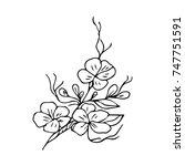 flower vector illustration.... | Shutterstock .eps vector #747751591
