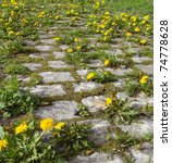 Very Old Cobble Stone Road...