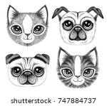 four sketchy pen drawings of... | Shutterstock . vector #747884737