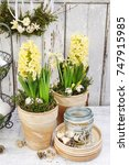easter home decoration with... | Shutterstock . vector #747915985