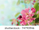 Beautiful spring tree blossoms against a blue background with copy space. - stock photo