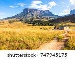 mount roraima in venezuela ... | Shutterstock . vector #747945175