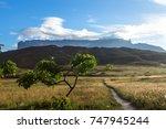 mount roraima in venezuela ... | Shutterstock . vector #747945244