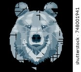 detailed cartoon bear on a dark ... | Shutterstock .eps vector #748001941