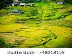 vietnam rice terrace    Shutterstock . vector #748018159