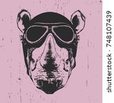 Portrait Of Rhinoceros With...