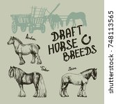 vector set draft horse  | Shutterstock .eps vector #748113565