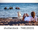 young girl with own dog  is... | Shutterstock . vector #748120231