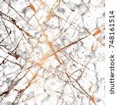 vector marble texture design... | Shutterstock .eps vector #748161514