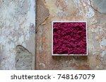 modern and multifunctional flat ... | Shutterstock . vector #748167079