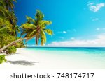 tropical sand beach with palm... | Shutterstock . vector #748174717
