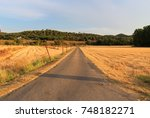 way in the middle of the field... | Shutterstock . vector #748182271