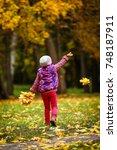 golden autumn | Shutterstock . vector #748187911