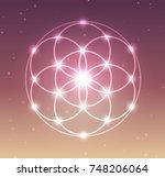 vector glowing flower of life... | Shutterstock .eps vector #748206064