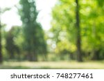 city park bokeh background | Shutterstock . vector #748277461
