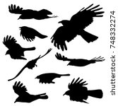 flying birds isolated vector... | Shutterstock .eps vector #748332274