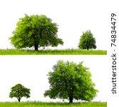 green season | Shutterstock . vector #74834479