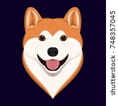 cartoon akita dog  vector... | Shutterstock .eps vector #748357045