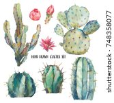 watercolor cactus set. natural... | Shutterstock . vector #748358077