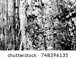 abstract background. monochrome ...   Shutterstock . vector #748396135