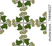 kukui nut tree  aleurites... | Shutterstock . vector #748448227