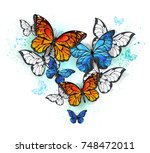 Stock vector realistic butterflies blue morpho and orange monarchs on white background 748472011