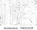 spotty surface. white and black ... | Shutterstock .eps vector #748513159