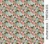 seamless gorgeous pattern in... | Shutterstock . vector #748526101