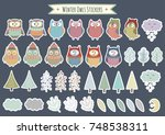 winter owls stickers collection.