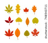 fall and leaves vector set | Shutterstock .eps vector #748543711
