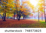 autumn season at sunrise in... | Shutterstock . vector #748573825