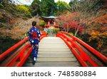 women in traditional japanese... | Shutterstock . vector #748580884