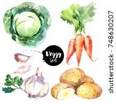 watercolor vegetables set.... | Shutterstock . vector #748630207