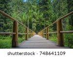 wooden pedestrian bridge in the ...