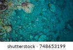 Martinique Island In The...