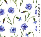 watercolor seamless pattern of... | Shutterstock . vector #748684111