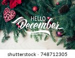 great season texture with... | Shutterstock . vector #748712305