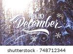great season texture with... | Shutterstock . vector #748712344
