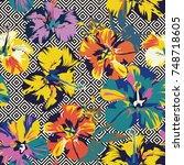 tropical flower hibiscus... | Shutterstock .eps vector #748718605