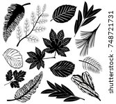 black icons of leaves of... | Shutterstock .eps vector #748721731