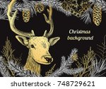 christmas and new year... | Shutterstock .eps vector #748729621