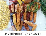 dried ears of corn and... | Shutterstock . vector #748763869