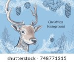 christmas and new year... | Shutterstock .eps vector #748771315