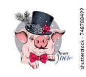 christmas card. portrait of the ... | Shutterstock .eps vector #748788499