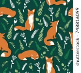 foxes and flowers  hand drawn... | Shutterstock .eps vector #748816099